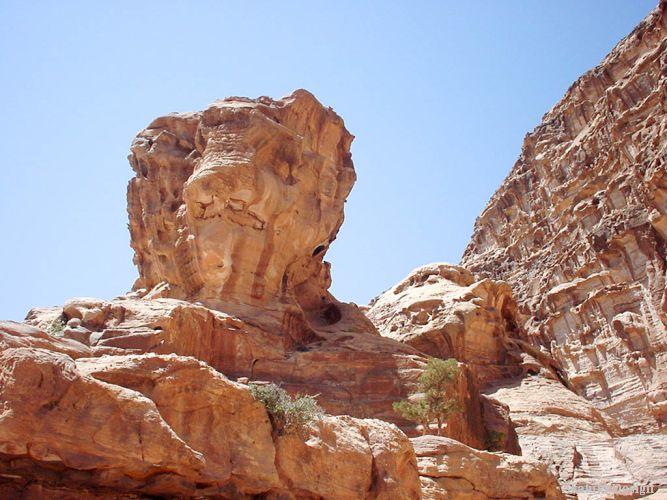 ペトラ遺跡のライオン岩