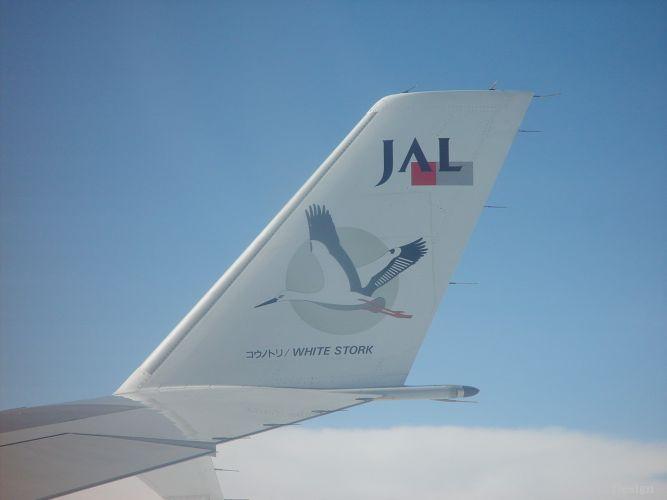 飛行機でインドへ
