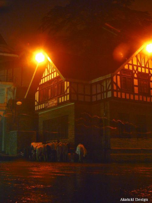 シムラの夜の写真