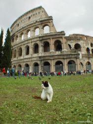 イタリア旅行写真ダイジェスト